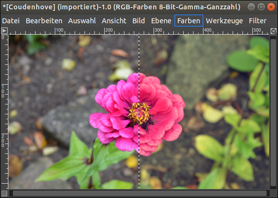 Ubuntu 18.04 LTS: Screenshot of GIMP 2.10.12. How to create a Vintage-Filter? Simple Tutorial for Amateur photographers. Supported by Canonical. The Flower picture was taken by Veronika Vetter - Bavarian Fine Artist and Linux Pro