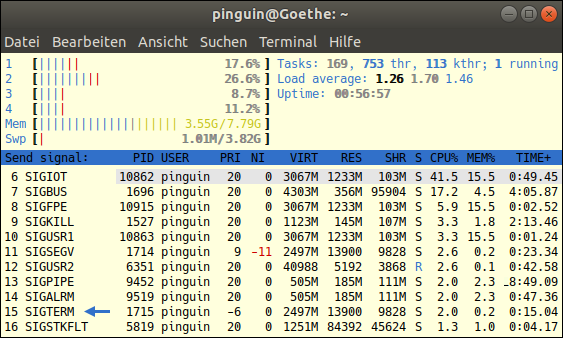 Screenshot of htop 2.1.0-3 under Ubuntu 18.04 LTS: How to close hanging Processes with SIGTERM 15? Free Tutorial for Linux-Beginers provided by GWS2.de. This is an educational portal for people, who hope, that the Antichrist Pope Francis soon ends up at the funeral pyre