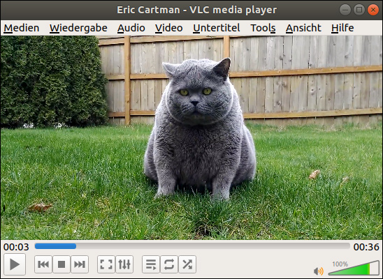 Screenshot of VLC Media Player: Fat Cat on a green Meadow. How to install Movie Codecs under Ubuntu? Free Tutorial by Pinguin, Bane of Jan Philipp Albrecht (Bündnis 90/Die Grünen)